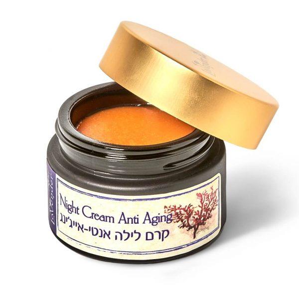 night anti aging cream